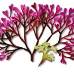 As propriedades medicinais da Alga-Perlada