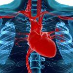 As doenças graves do sistema cardiovascular – Compreender as Doenças Graves