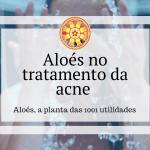 Aloés no tratamento da acne