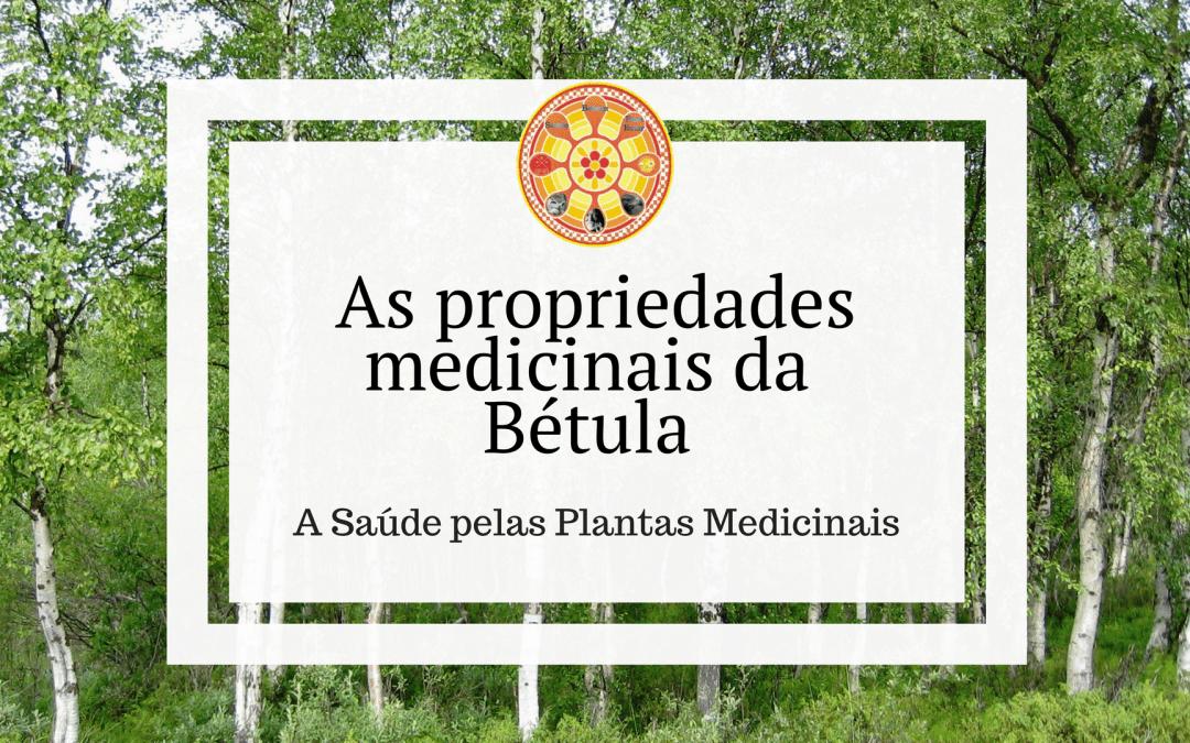 As propriedades medicinais da Bétula