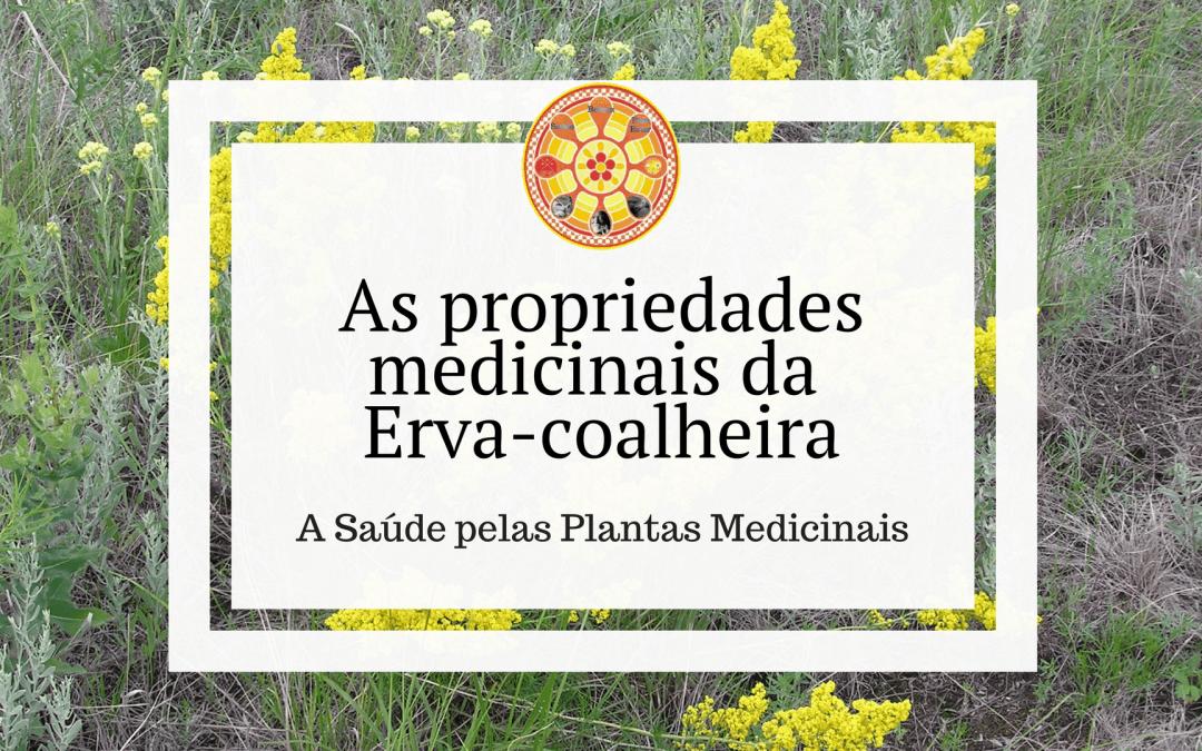 As propriedades medicinais da Erva-coalheira