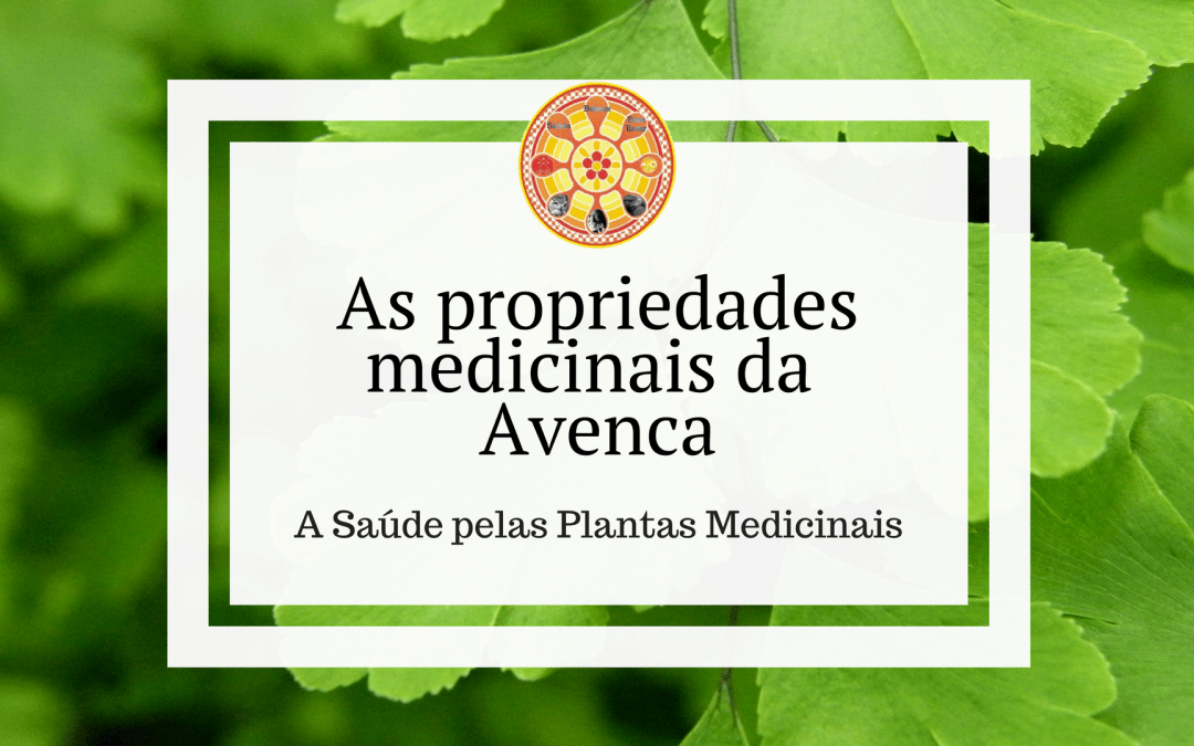 As propriedades medicinais da Avenca