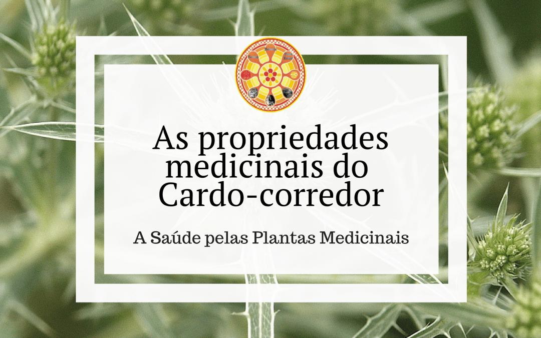 As propriedades medicinais do Cardo-corredor