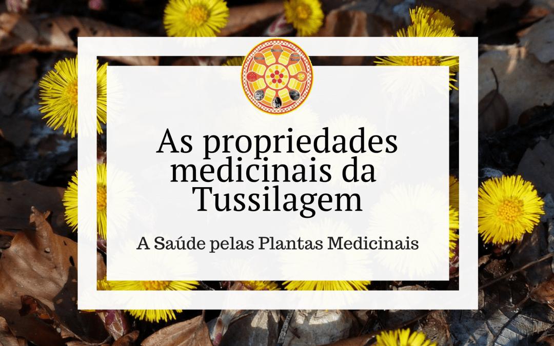 As propriedades medicinais da Tussilagem
