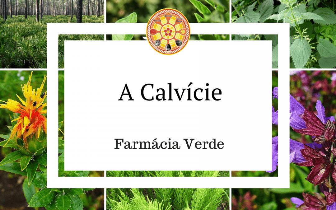 Calvície – Tratamento com a farmácia verde