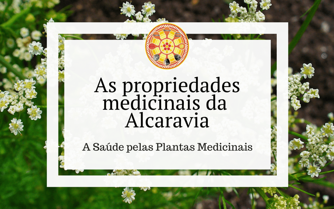 As propriedades medicinais da Alcaravia