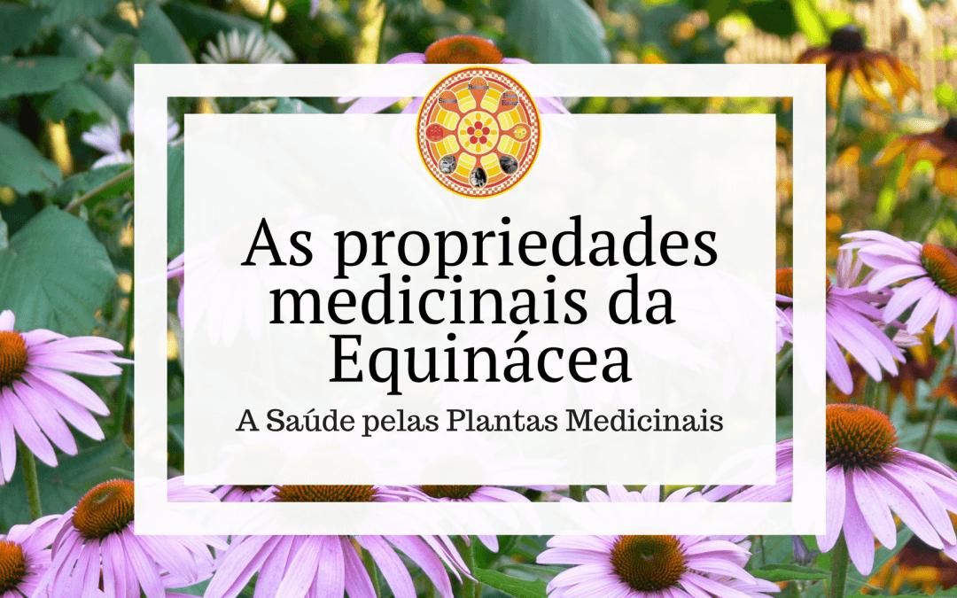 As propriedades medicinais da Equinácea