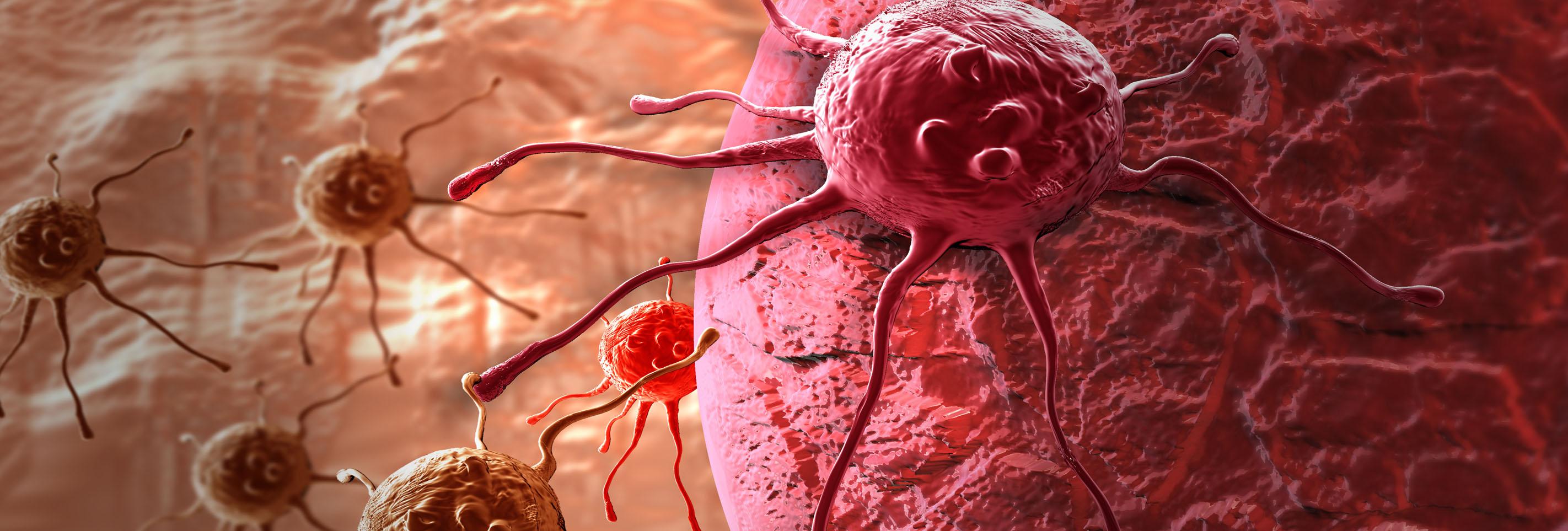 O Cancro – Compreender as Doenças Graves