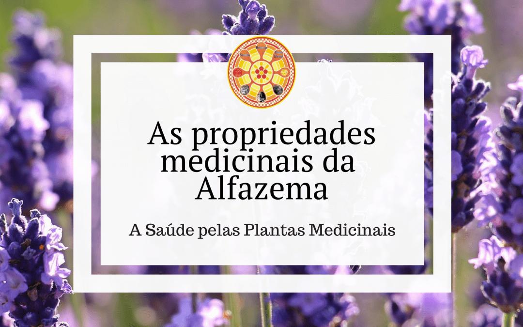 As propriedades medicinais da Alfazema