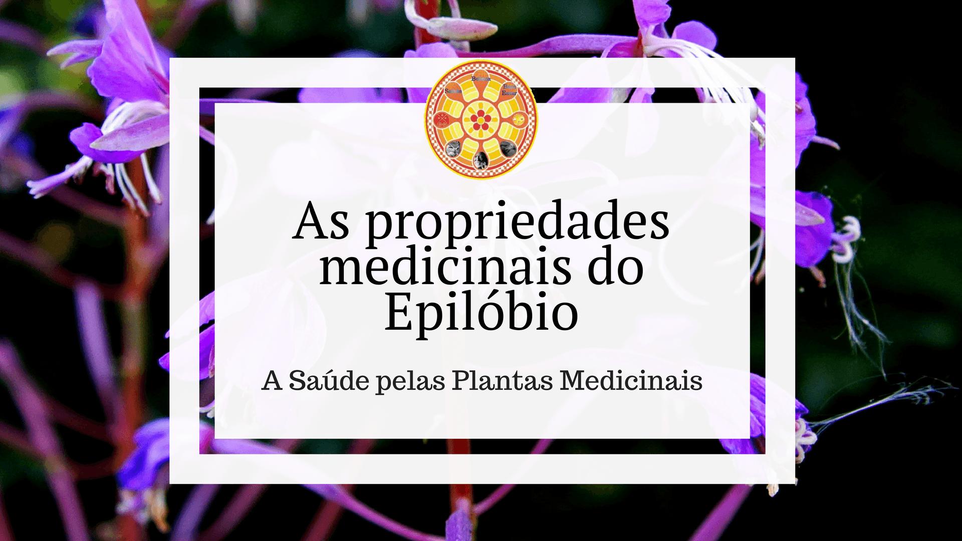 Epilóbio