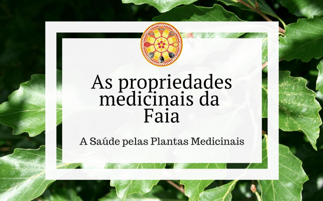 As propriedades medicinais da Faia