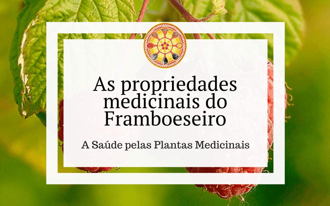 As propriedades medicinais do Framboeseiro