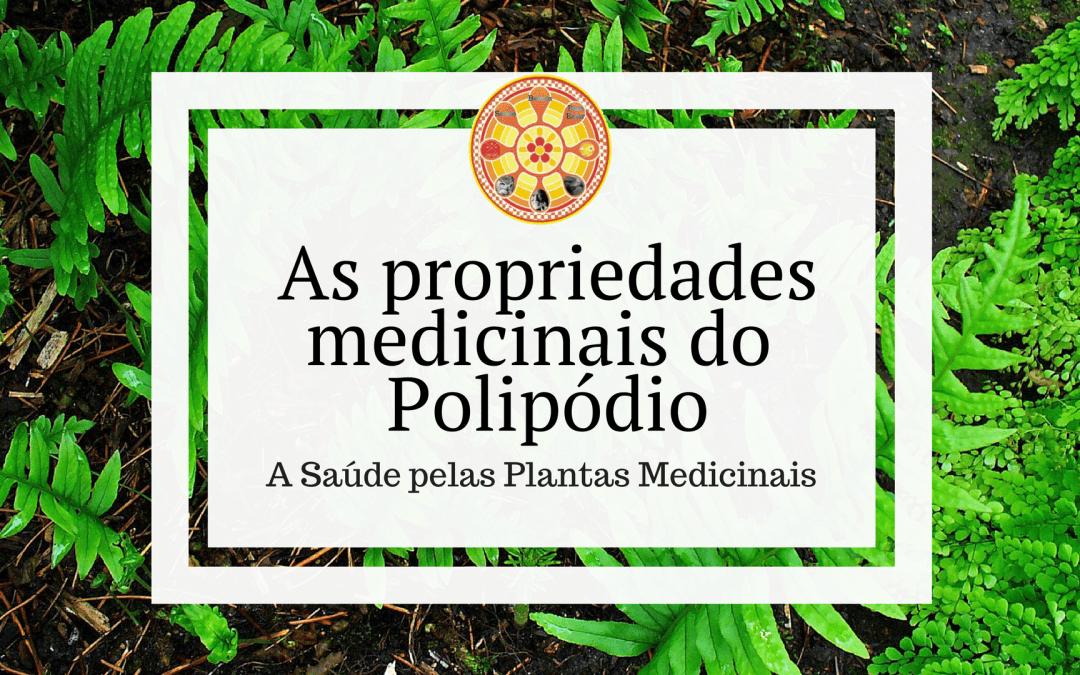 As propriedades medicinais do Polipódio