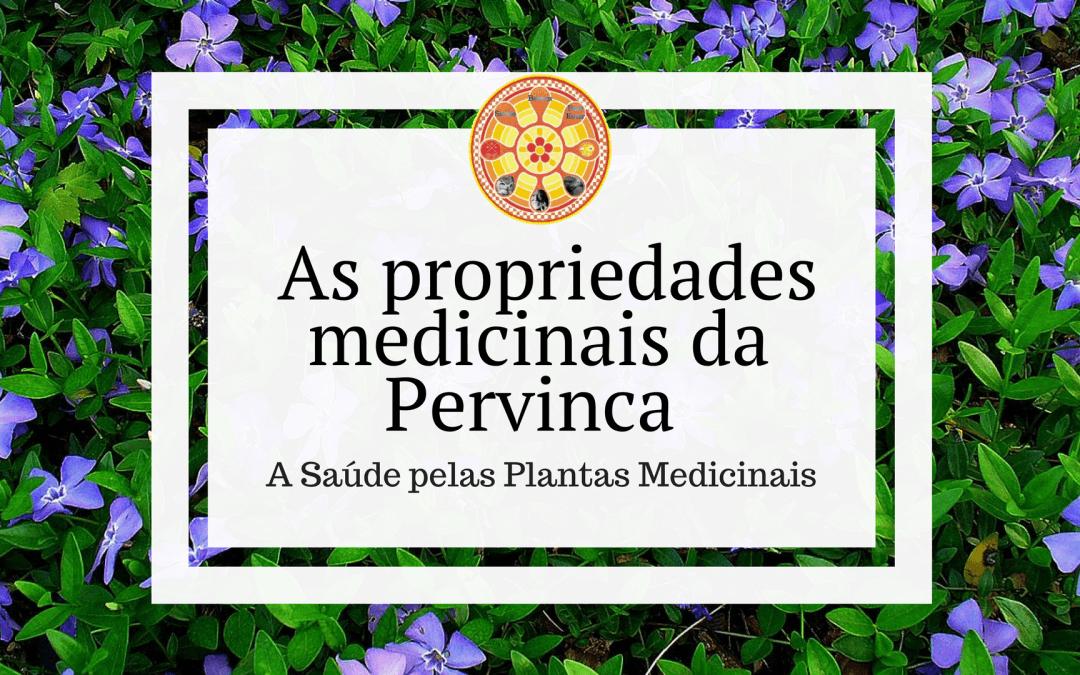 As propriedades medicinais da Pervinca