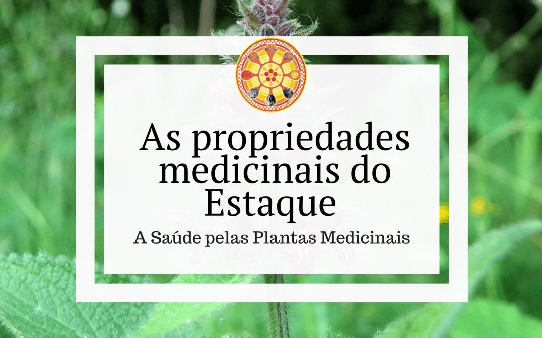 As propriedades medicinais do Estaque