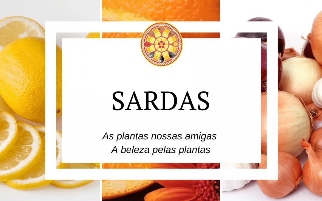 Sardas – As plantas nossas amigas