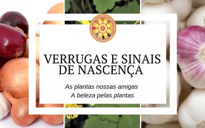 Verrugas e sinais de nascença – As plantas nossas amigas