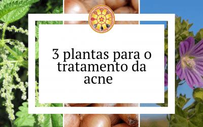 3 plantas para o tratamento da acne