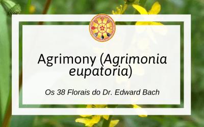 Agrimony – Florais de Bach