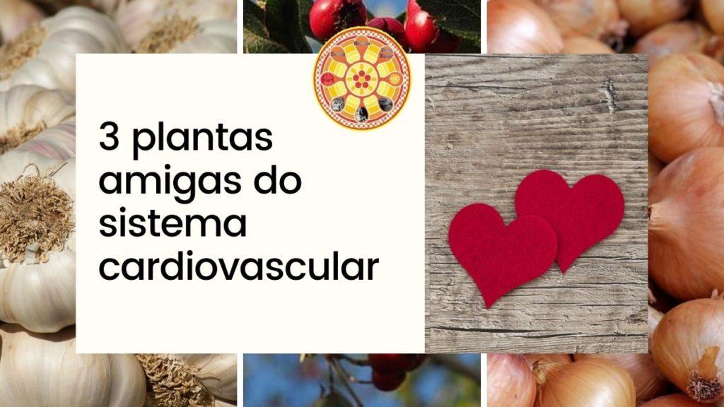 plantas amigas do sistema cardiovascular